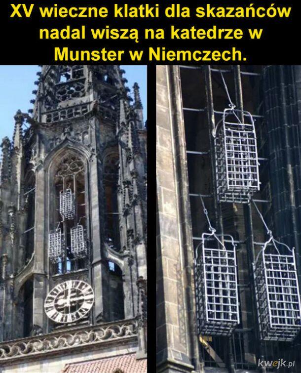 Klatki na katedrze