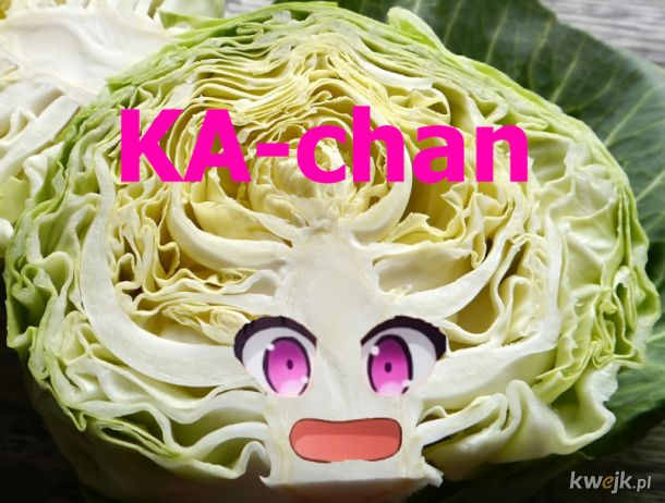 Kaczan