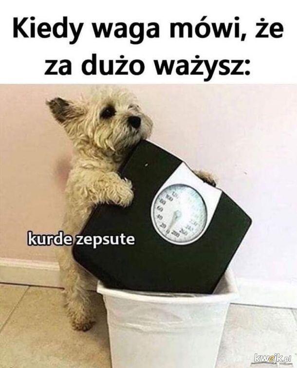 Zepsute