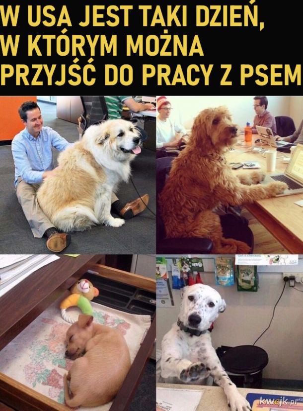 Też chce taki dzień w Polsce :(
