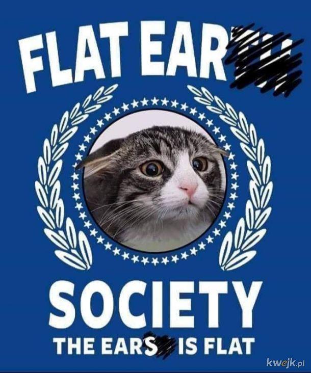 Towarzystwo Płaskich Uszu