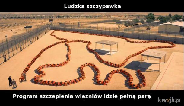 Szczypawka Lucka