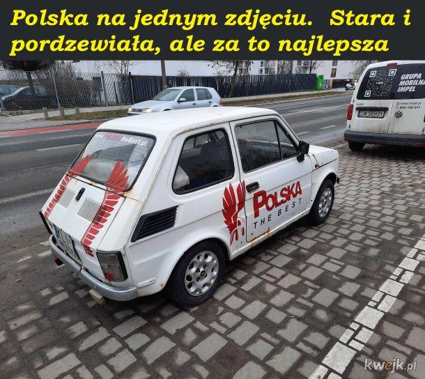 Polska guurom