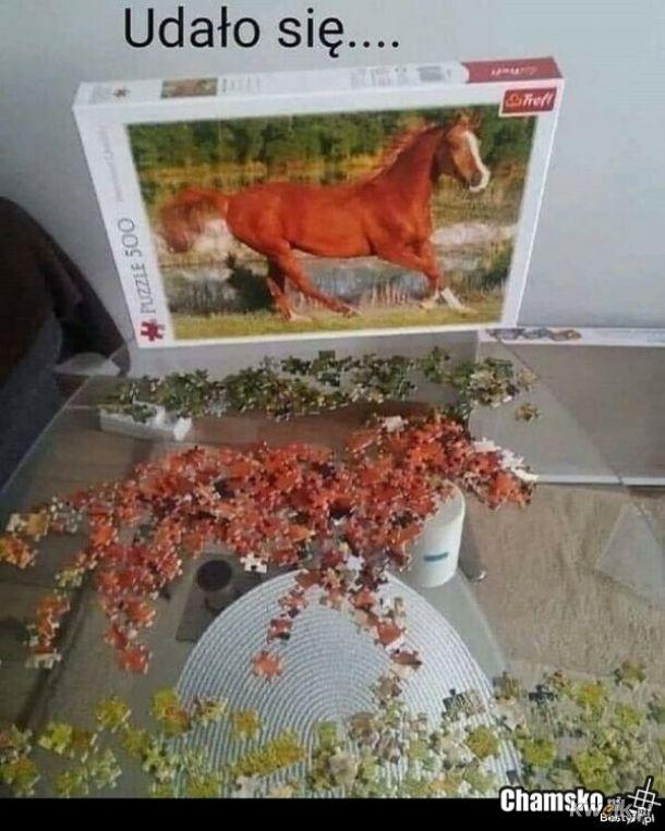 puzzle konia ułożone