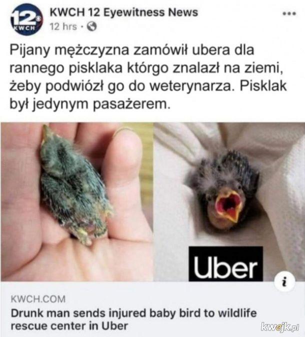 Dobry ziomek  Uber