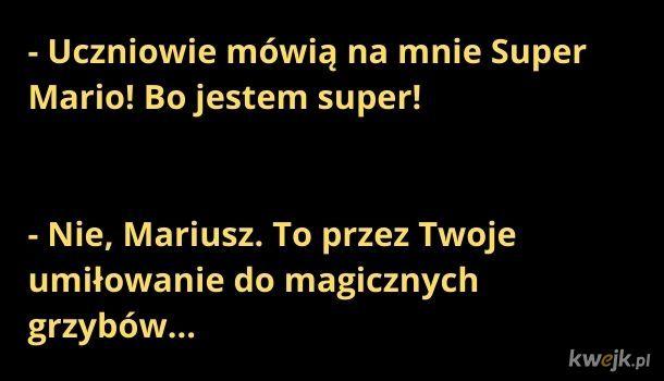 Przygody Mariusza
