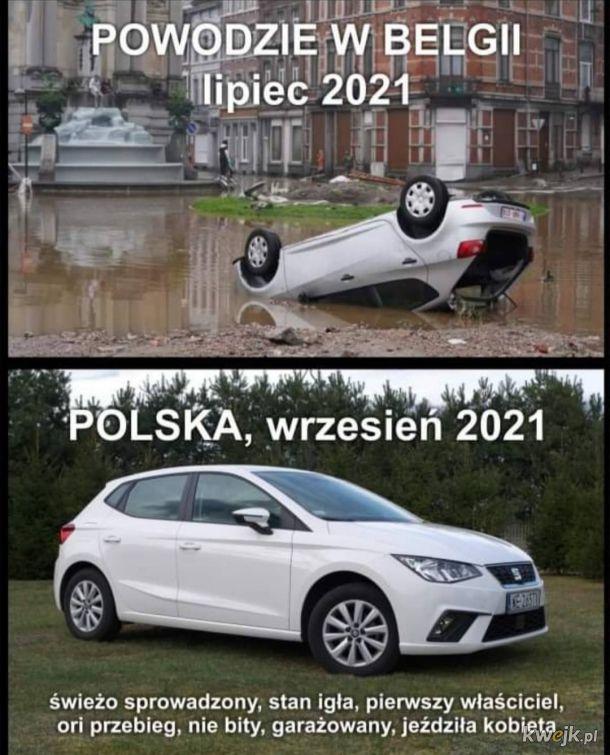 Polski Handelek
