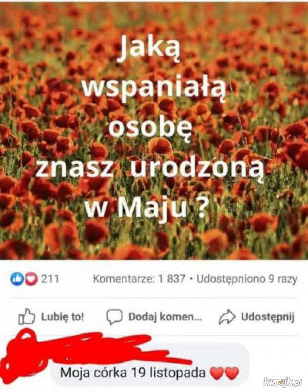 Poczet internetowy madek polskich