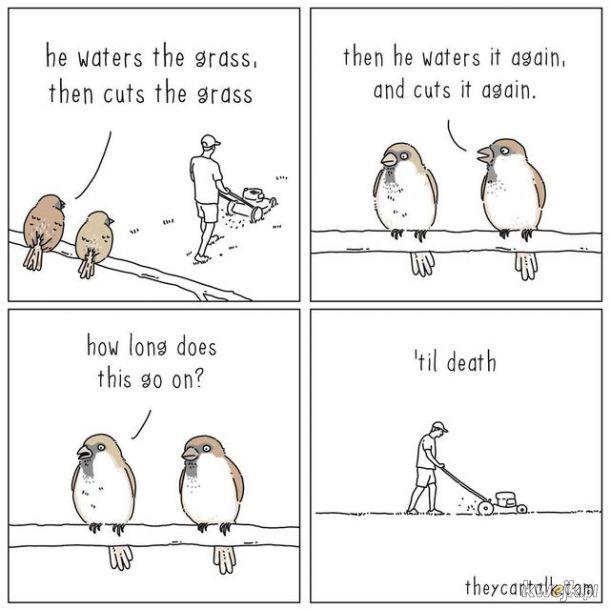 I tak do usranej śmierci