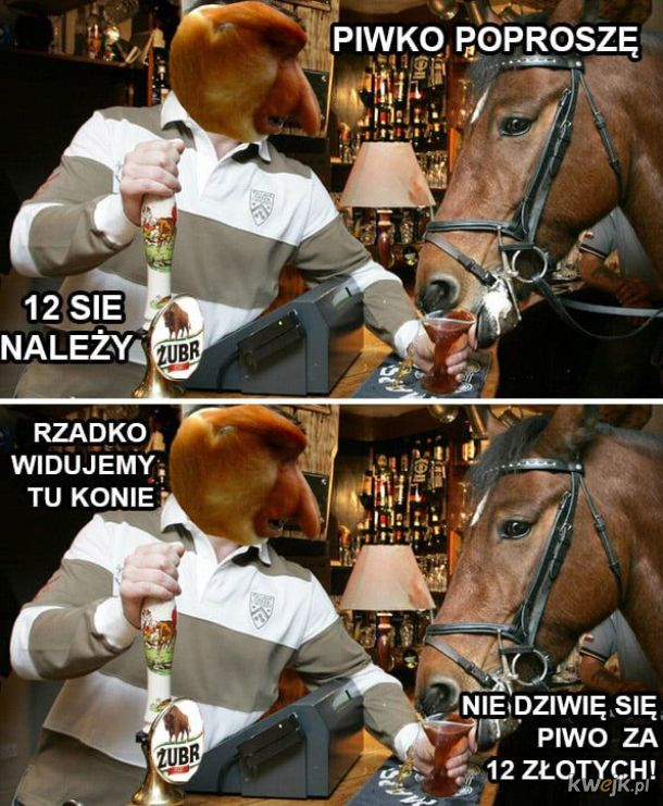 Koń w pubie