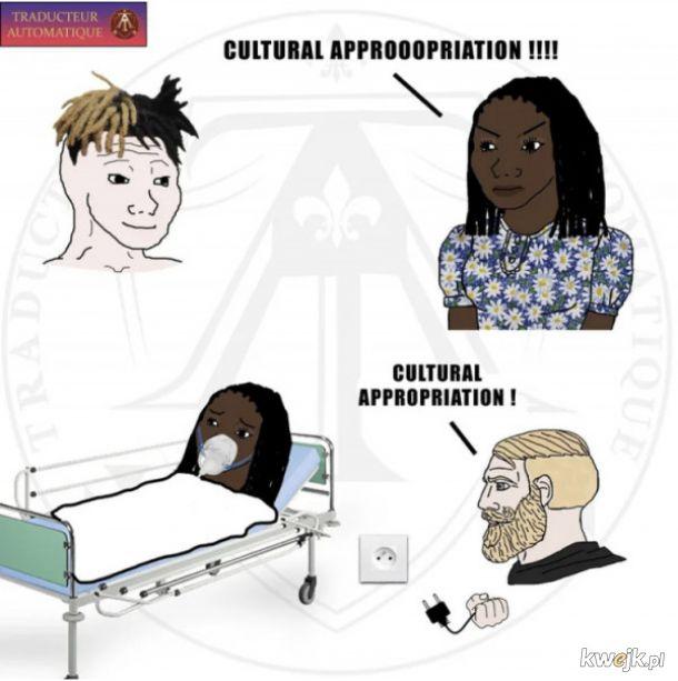 Kradzież kultury