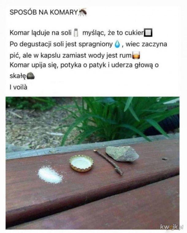 Sposób na komary
