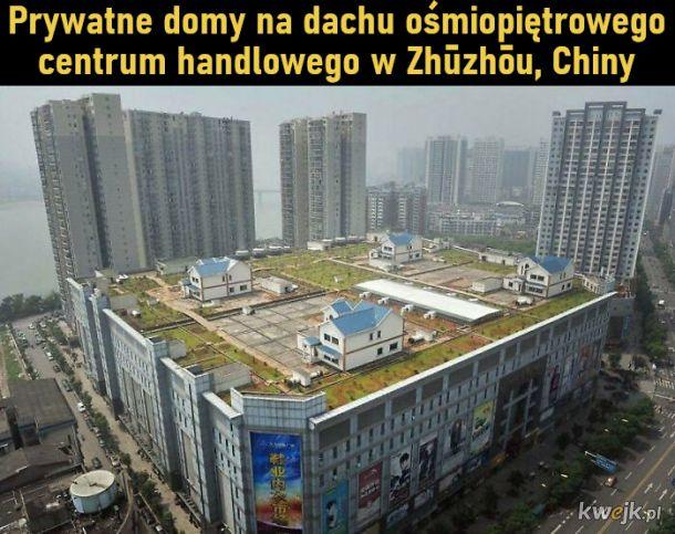 Miejskie piekło, obrazek 3