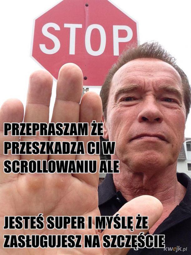 Arnold mówi stop