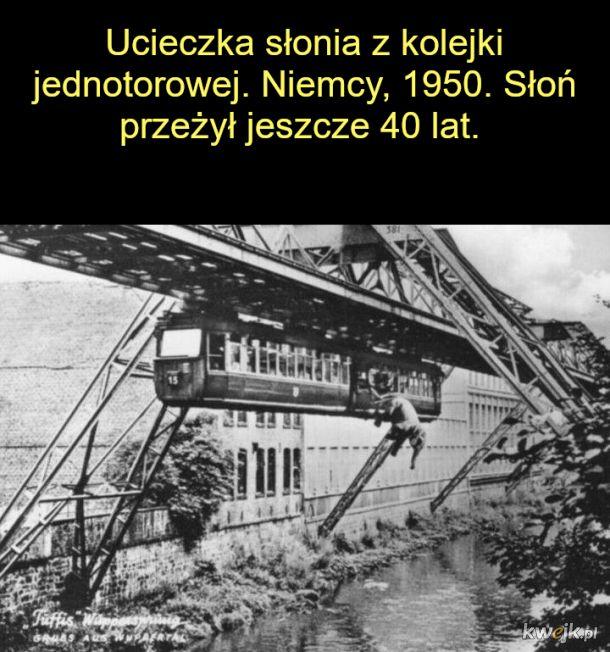Fajne historyczne zdjęcia, obrazek 14