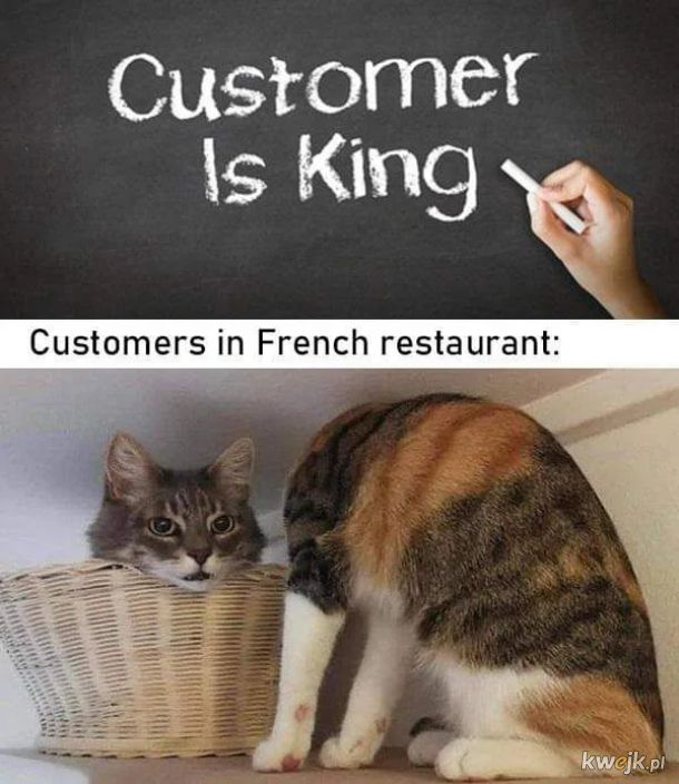 Klient nasz... Pan?