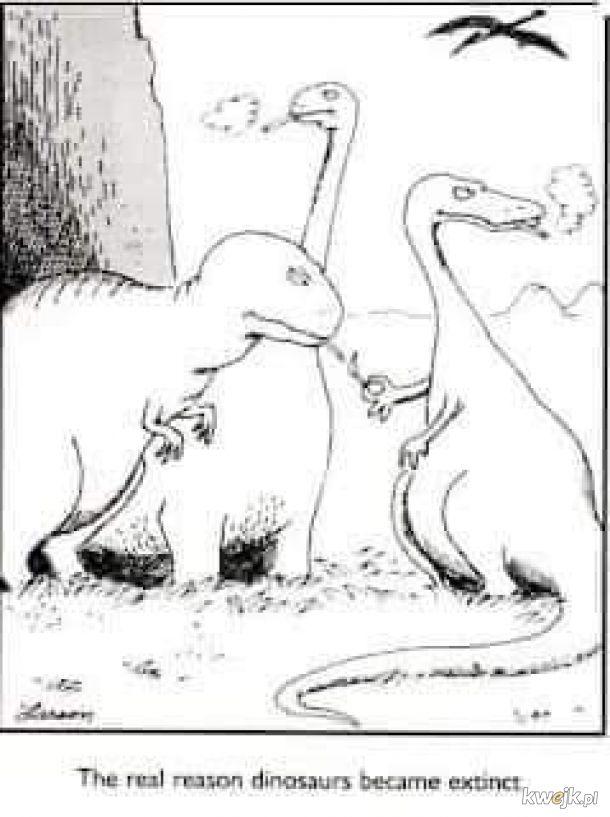Z cykl zagadki historii, dlaczego naprawdę wyginęły dinozaury ;)