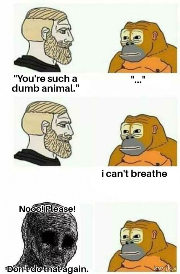 Oddychaj małpko!