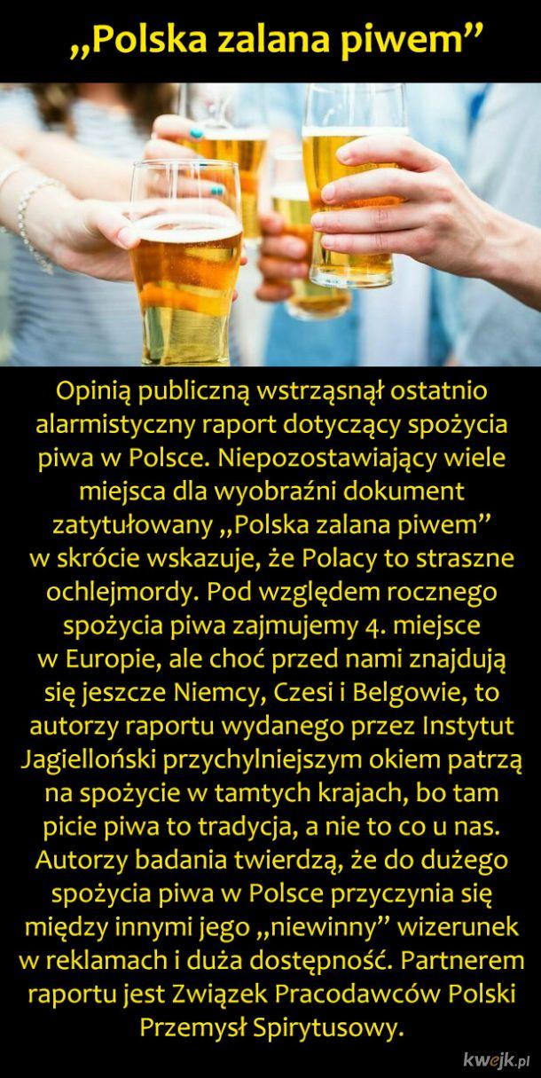 Polska piwna