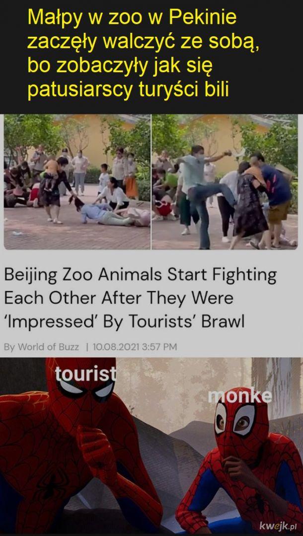 Naśladowanie zwierząt