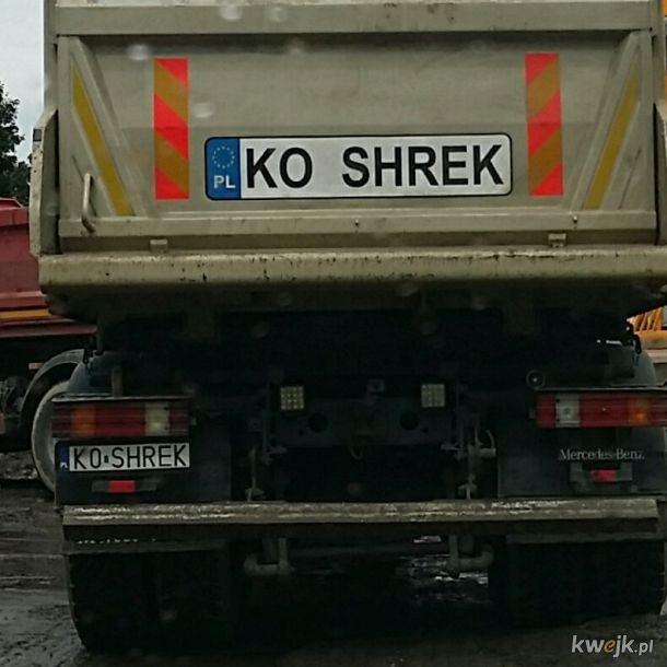 Shrek prequel