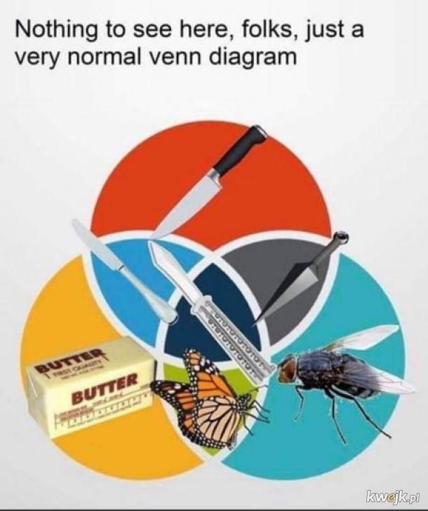 Tylko diagram.