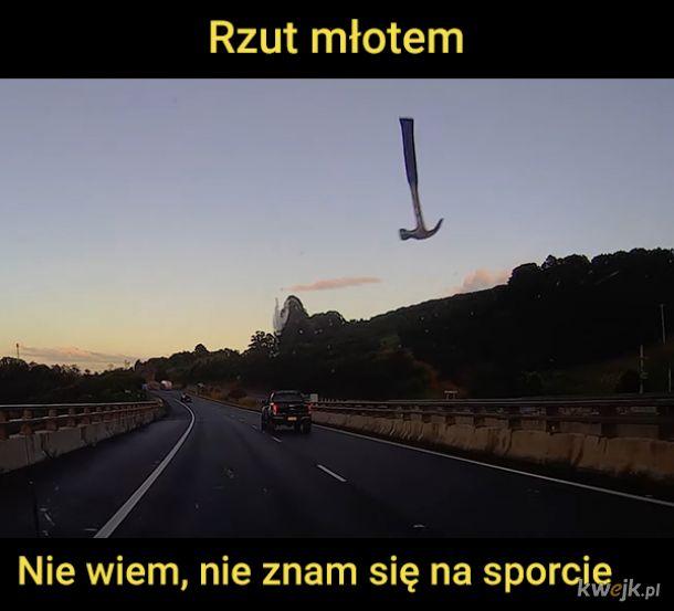Polski sport narodowy, na to wygląda