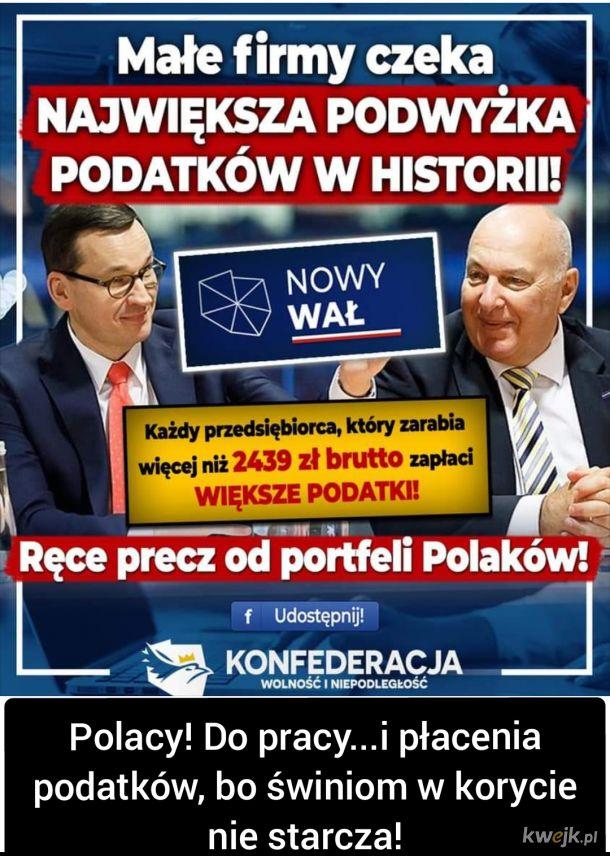 Polacy przetrwali zabory i dwie wojny światowe a polegną pod rządami PiS.