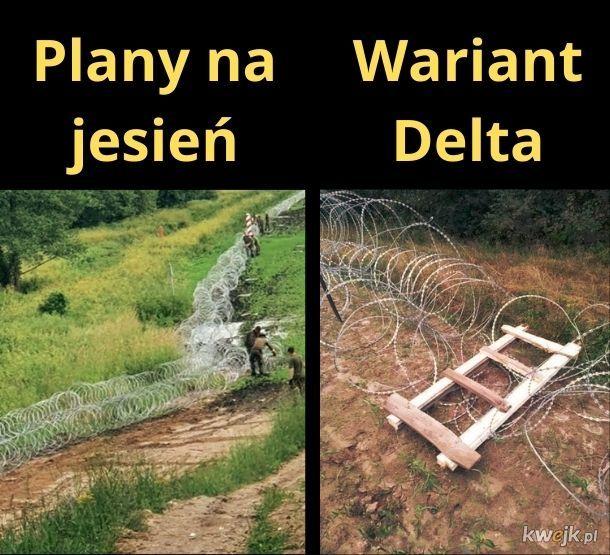 Wariant Delta