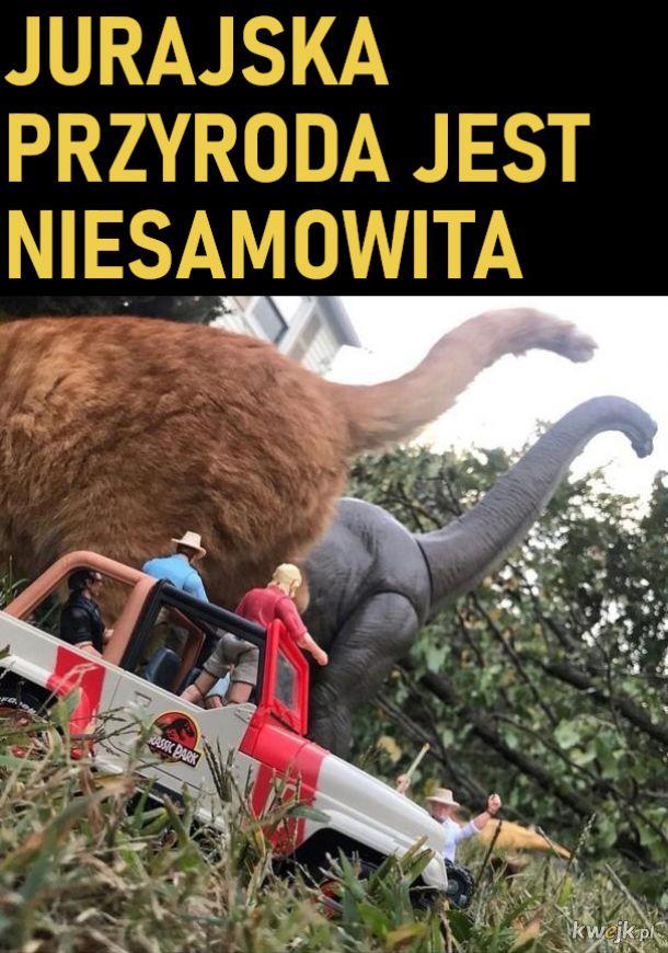 Kotozaur atakuje
