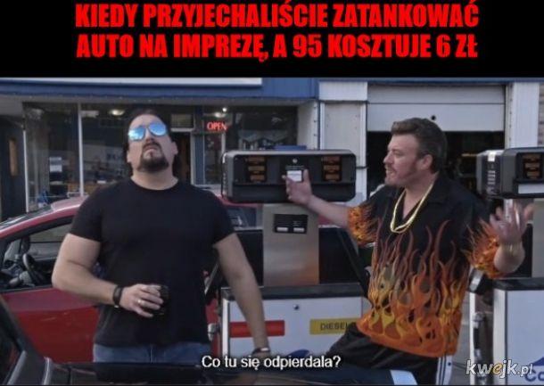 Wielga Bolzga