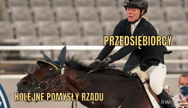 Polska gospodarka jest jak koń. TEN KOŃ.