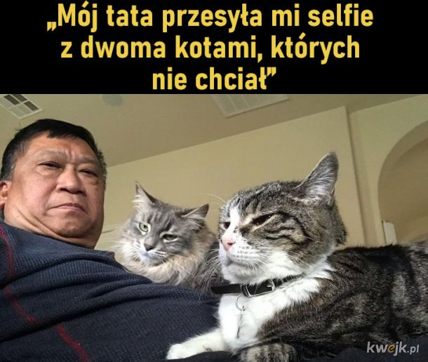 Zdjęcia pokazujące jak wygląda w rzeczywistości obraz ojca, który nie chce zwierząt w domu