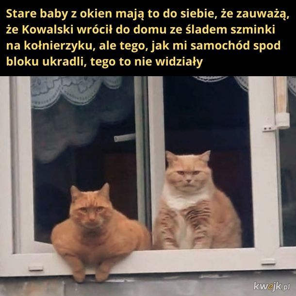 Stare baby z okien