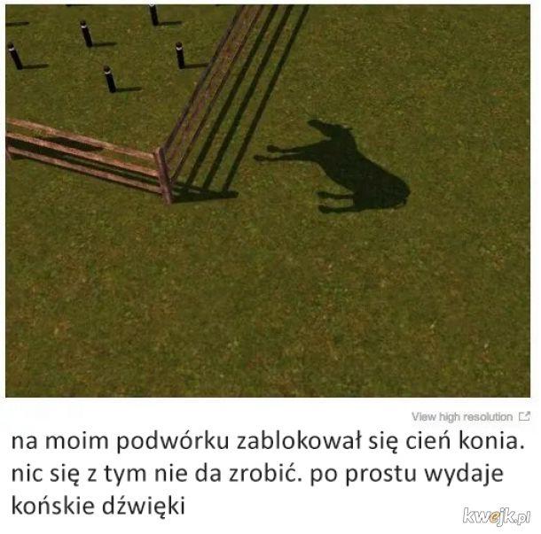 Glicze i bugi z The Sims