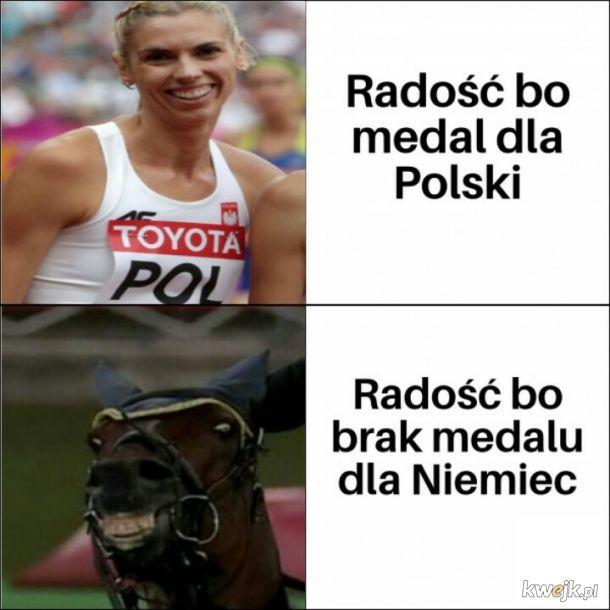 Koń Polski