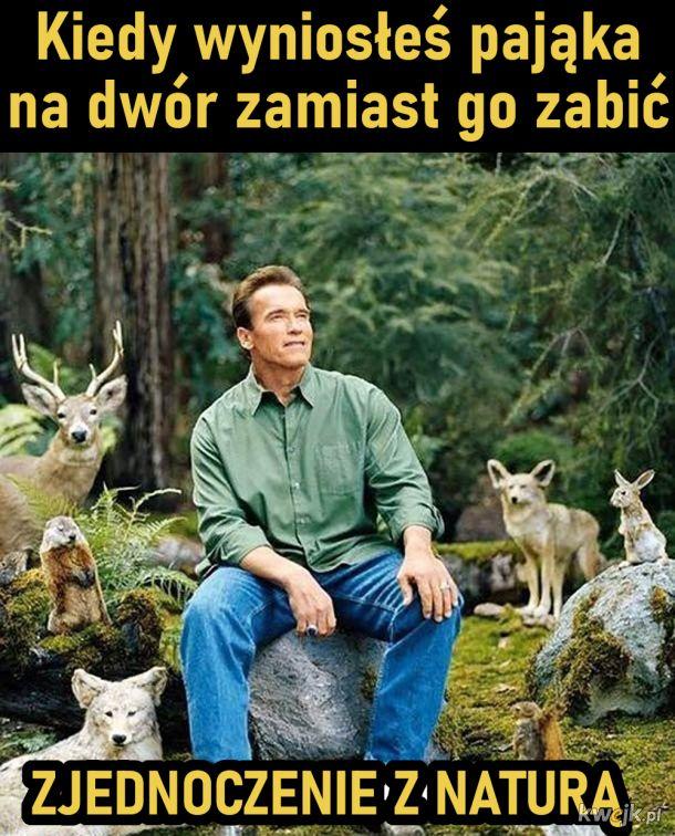 Zjednoczenie z naturą