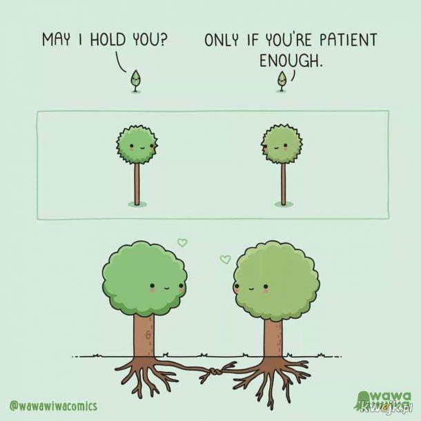 Tylko jeśli jesteś wystarczająco cierpliwy.