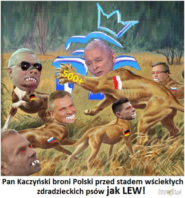 Polska, rok 2015