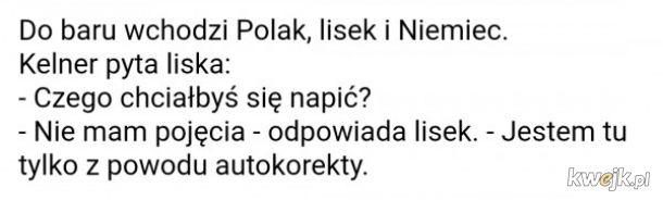 Dowc**asek