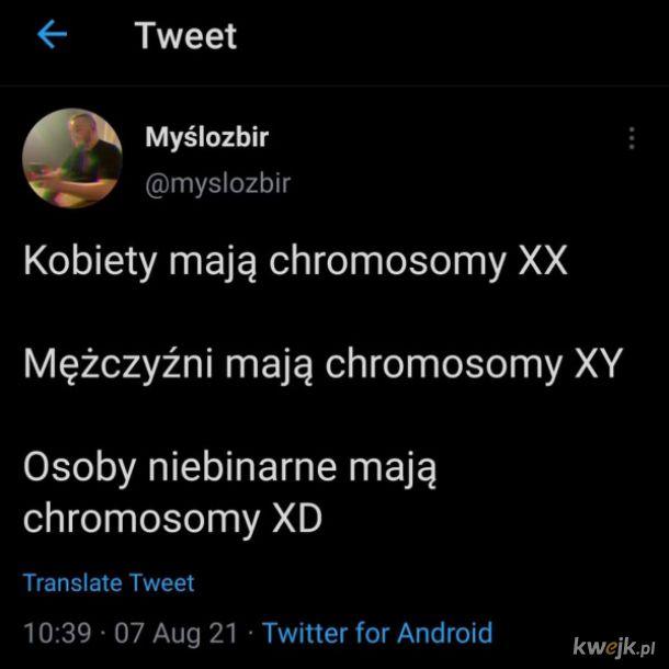 Chromosomyy
