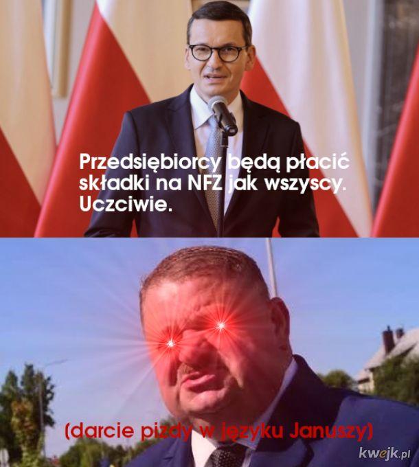 Darcie p***y w języku Januszy