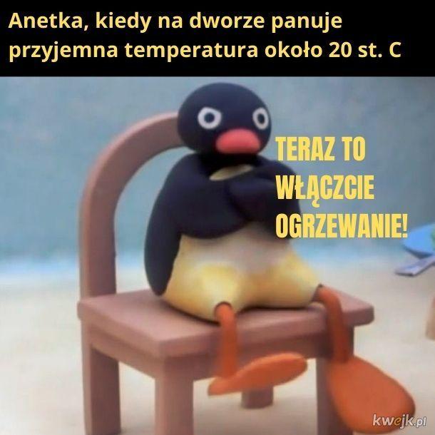 Anetka