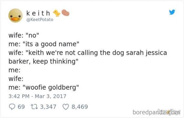 Imię dla psa.