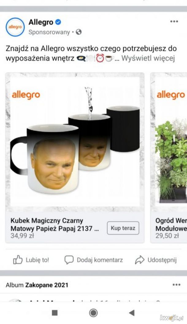 Allegro z rigczem