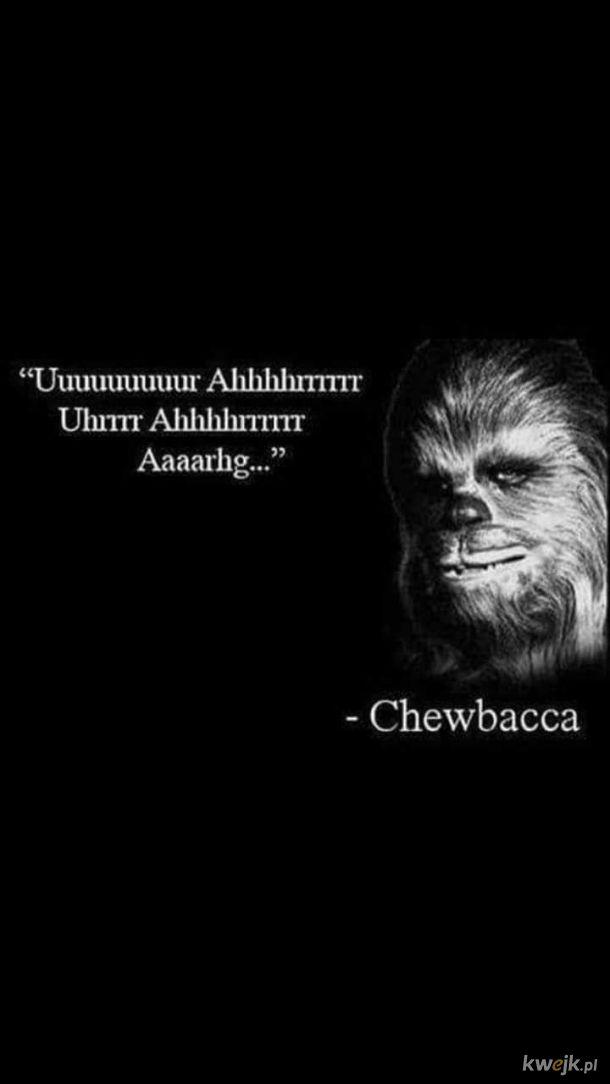 Mądrze rzecze!
