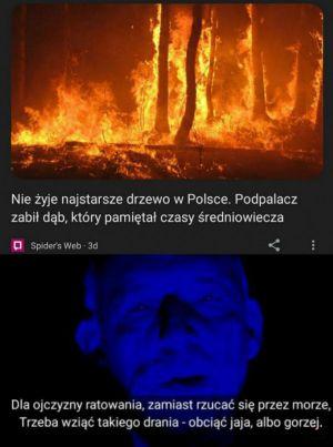 pawel-szycowski