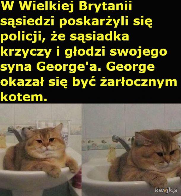 Zmożony głodem George