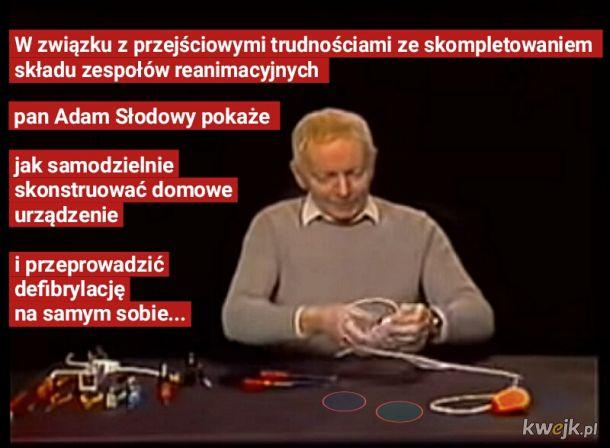 Program 230V+