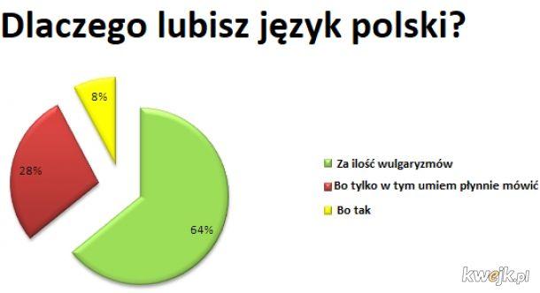 Dlaczego lubisz język polski?